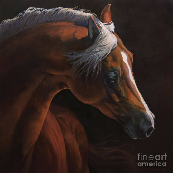 Horse Head Wall Art - Painting - Untitled by Jeanne Newton Schoborg