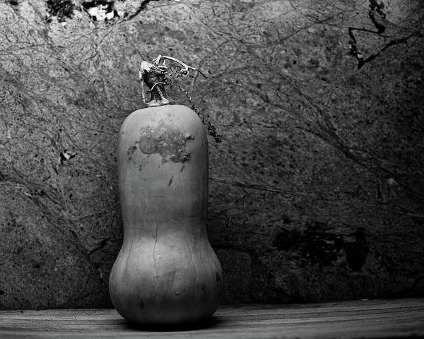 Cucurbit Photograph - Up Against The Wall by Susan Capuano