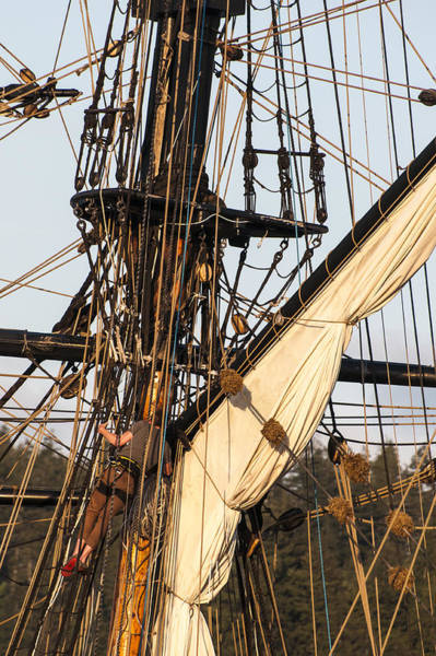 Photograph - Up In The Rigging by Robert Potts