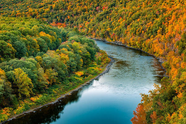 Photograph - Upper Delaware River by Mihai Andritoiu