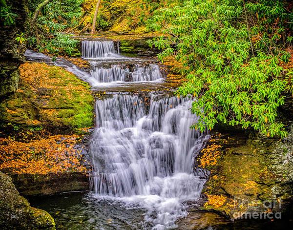 Photograph - Upper Dingman Falls by Nick Zelinsky
