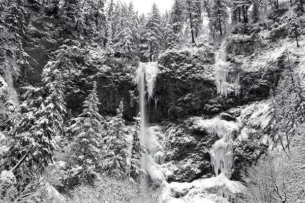 Photograph - Upper Falls In Snow's Cover by Wes and Dotty Weber