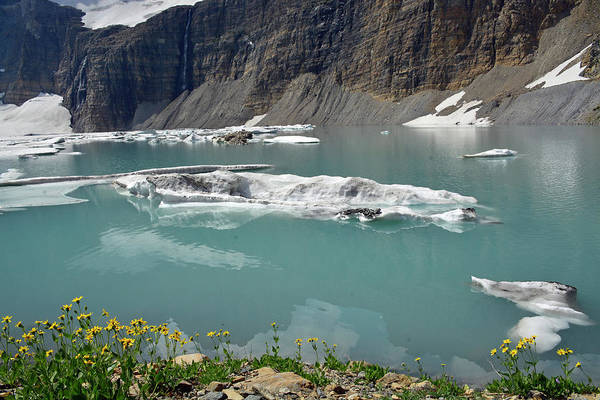 Photograph - Upper Grinnell Lake With Icerbergs And Flowers by Bruce Gourley