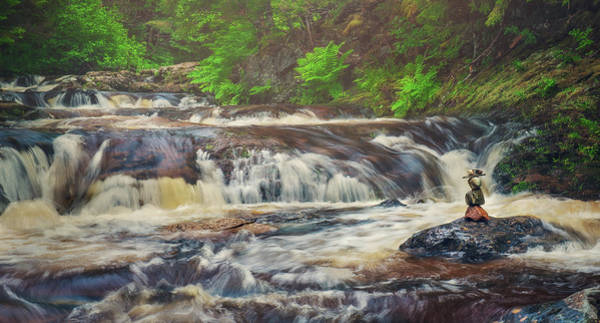 Photograph - Upper Laverty Falls by Tracy Munson
