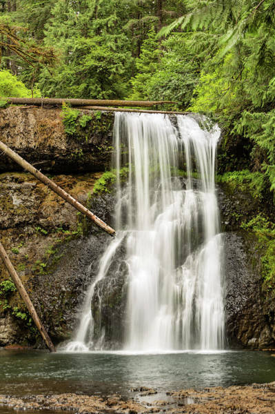 Sliver Photograph - Upper North Silver Falls Vertical by Mary Jo Allen