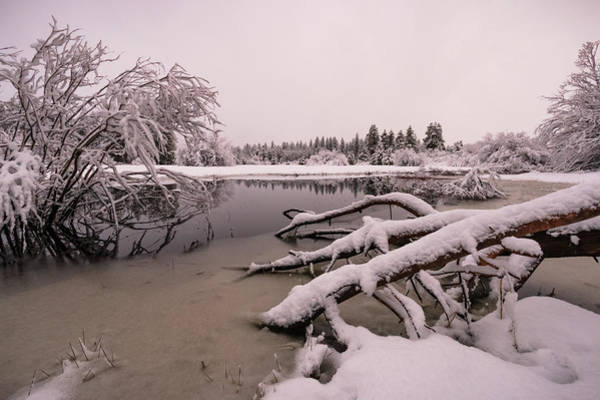 Lightroom Photograph - Upper Truckee Marsh Spring Snow Reflections by Mike Herron