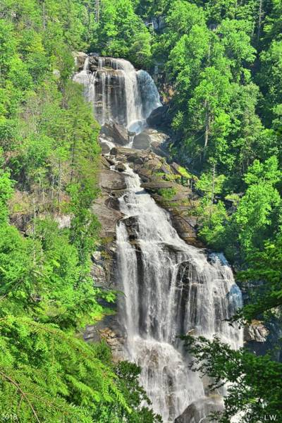 Photograph - Upper Whitewater Falls Nc Summertime Vertical by Lisa Wooten