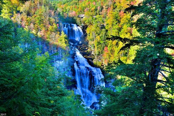 Photograph - Upper Whitewater Falls North Carolina by Lisa Wooten