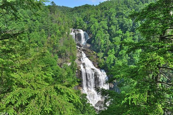 Photograph - Upper Whitewater Falls North Carolina Summertime by Lisa Wooten