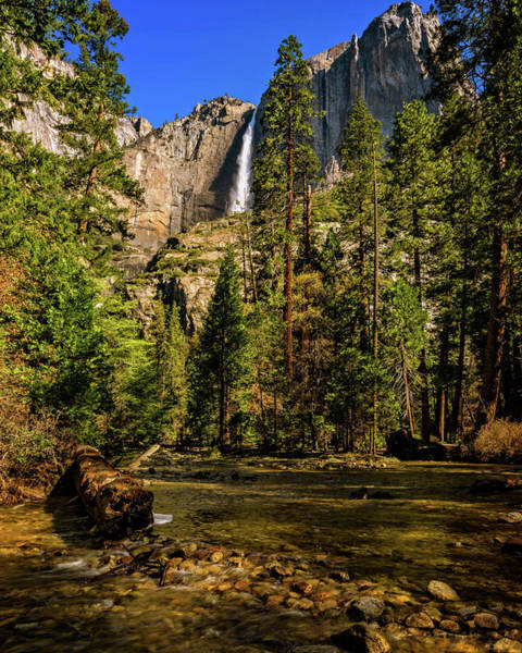 Photograph - Upper Yosemite Falls From Yosemite Creek by John Hight