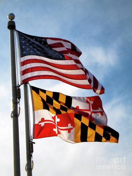 Us And Maryland Flags Art Print