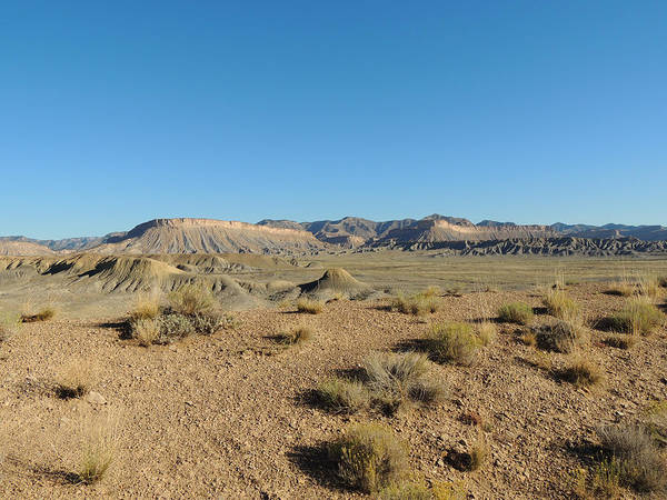 Photograph - Utah Desert In July by Andrew Chambers