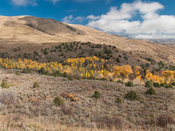Photograph - Utah High Desert Autumn by Joshua House