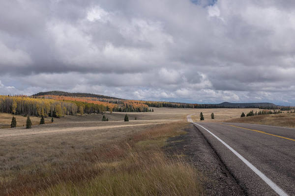 Photograph - Utah Highway With Aspens by Frank DiMarco