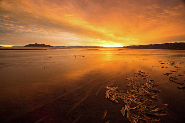 Photograph - Utah Lake Sunset by Wesley Aston