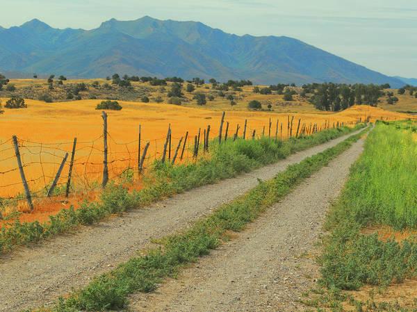 Photograph - Utah Ranch Road by David King