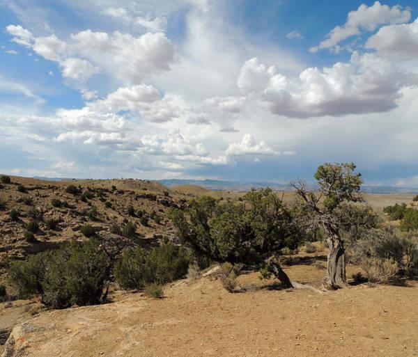 Photograph - Utah Summer  by Andrew Chambers