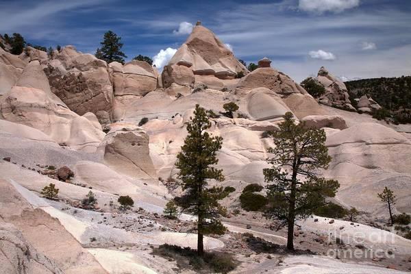 Photograph - Utah White Tent Rocks by Adam Jewell