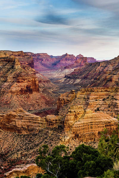 Photograph - Utah's Little Grand Canyon Vertical by TL Mair