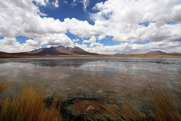 Photograph - Uyuni Salt Lake, Bolivia by Aidan Moran
