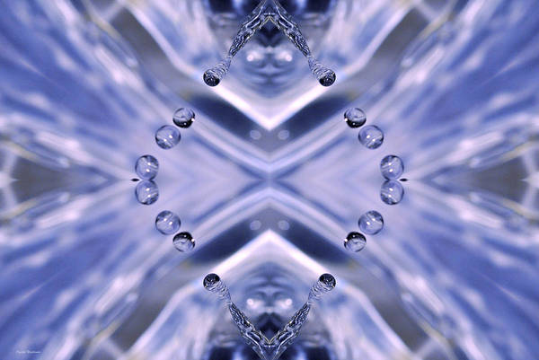 Photograph - Water Drops by Crystal Wightman