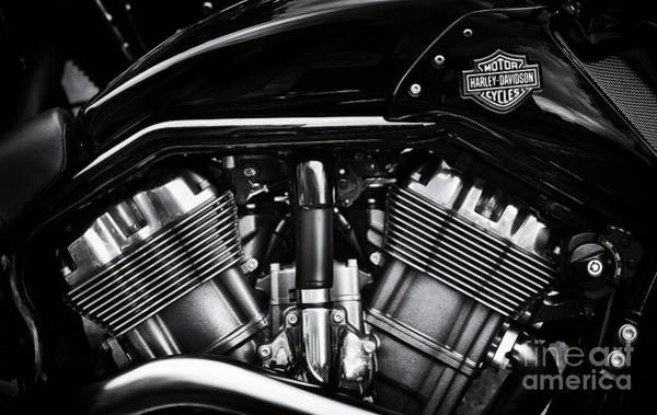 Harley Davidson Black And White Wall Art - Photograph - V Rod Muscle by Tim Gainey