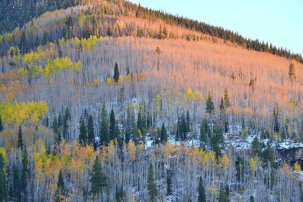 Photograph - Vail Fall Sunset by Ray Mathis