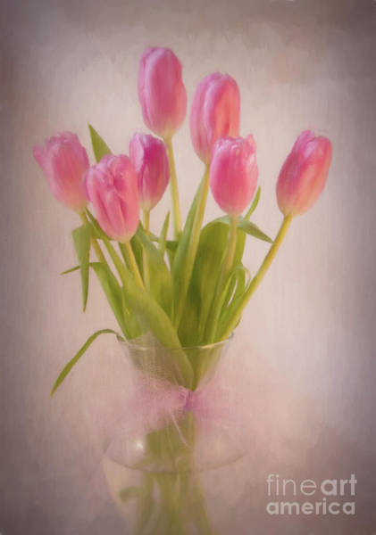 Wall Art - Photograph - Valentine Flowers by Michelle Tinger