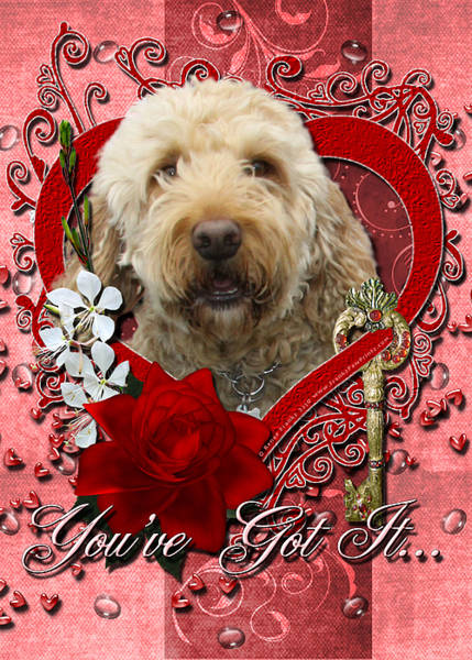 Golden Retriever Digital Art - Valentines - Key To My Heart Goldendoodle by Renae Crevalle