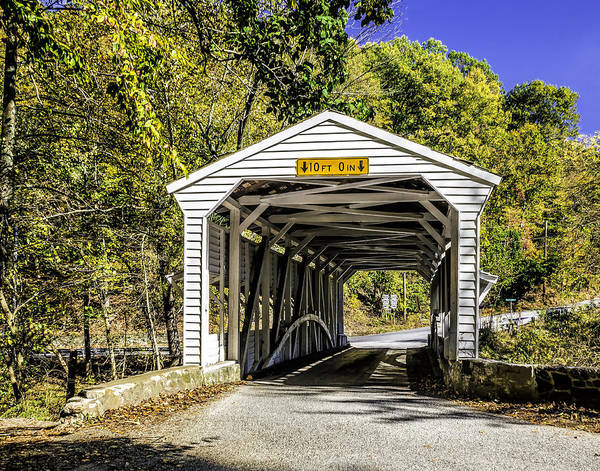 Photograph - Valley Forge Covered Bridge by Nick Zelinsky