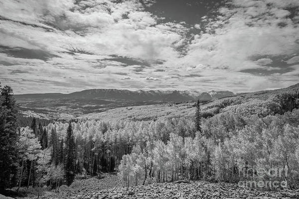 Photograph - Valley Of Color In Bw  by Michael Ver Sprill