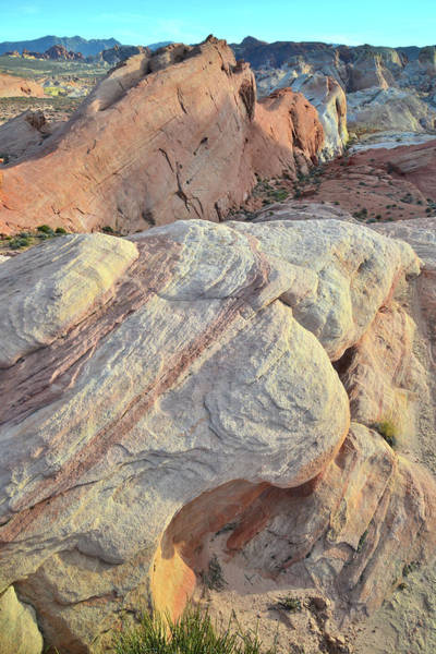 Photograph - Valley Of Fire At Sunset by Ray Mathis