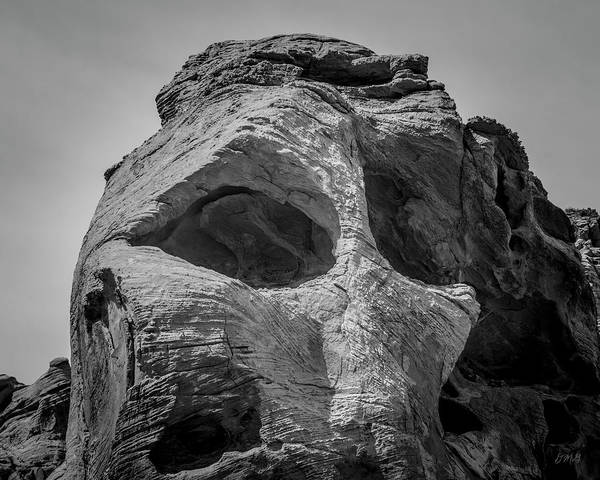 Photograph - Valley Of Fire Ix Bw by David Gordon