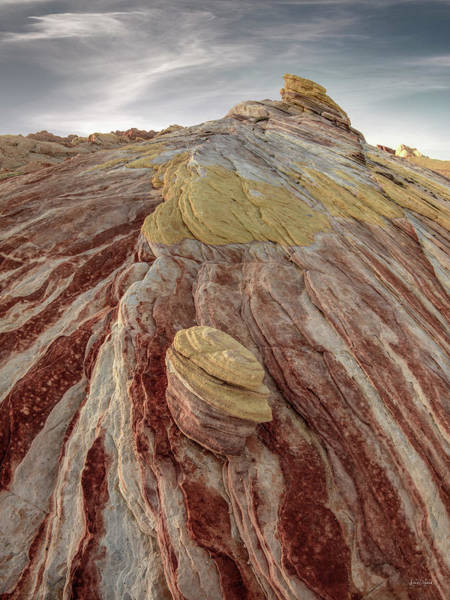 Photograph - Valley Of Fire by Leland D Howard