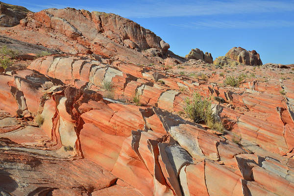 Photograph - Valley Of Fire's Beautiful Sandstone Slopes by Ray Mathis