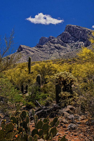 Photograph - Valley View No.4 by Mark Myhaver
