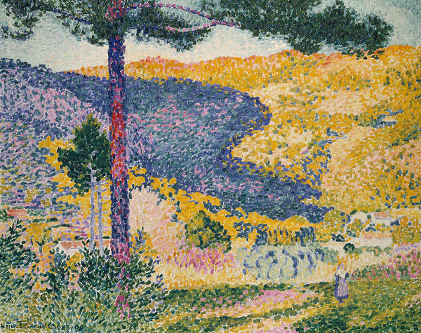 Painting - Valley With Fir  by Henri-Edmond Cross
