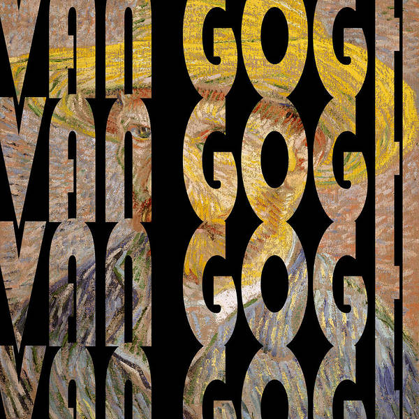 Photograph - Van Gogh 5 by Andrew Fare