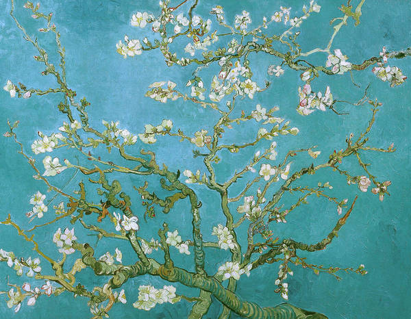 Decorative Painting - Van Gogh Blossoming Almond Tree by Vincent Van Gogh
