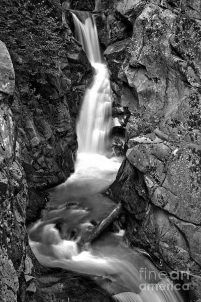 Photograph - Van Trump Creek Canyon - Black And White by Adam Jewell