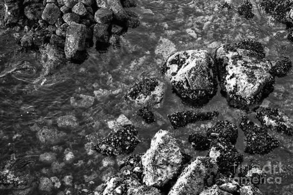 Wall Art - Photograph - Vancouver Harbor Rocks Mono by John Rizzuto