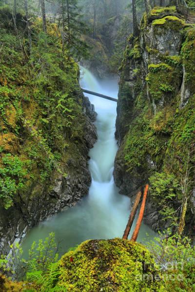 Photograph - Vancouver Island Rainforest Falls by Adam Jewell