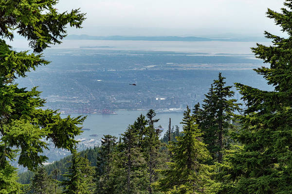 Photograph - Vancouver Through The Trees by Ross G Strachan
