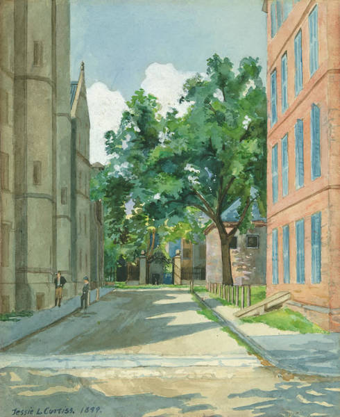 College Campus Painting - Vanderbilt Hall With Red Brick Buildings, Yale College by Jesse L Curtis