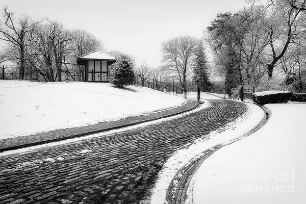Photograph - Vanderbilt Winter Road by Alissa Beth Photography