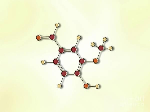 Painting - Vanilla Molecule by Pet Serrano