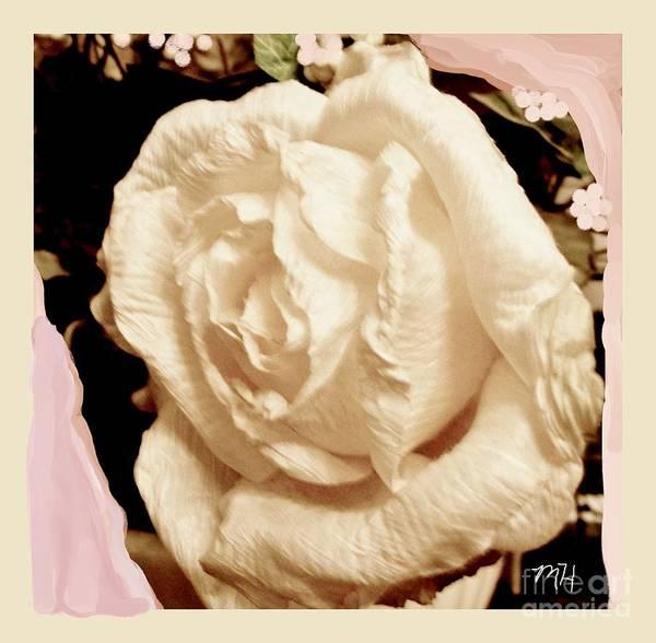 Border Mixed Media - Vanilla Rose by Marsha Heiken