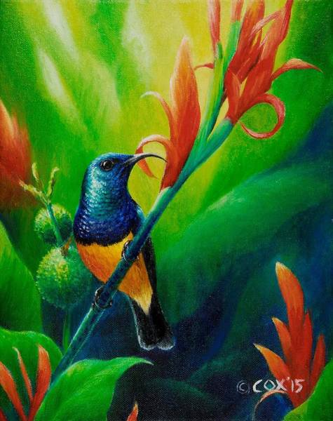 Painting - Variable Sunbird by Christopher Cox