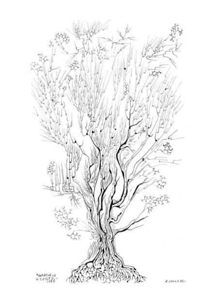 Drawing - Variation On A Cayley Tree by Regina Valluzzi