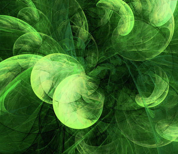 Digital Art - Variations Of Nature Abstract Plant by Isabella Howard